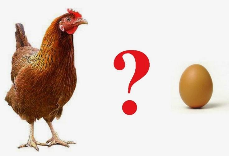indipendenza economica in auto uovo gallina