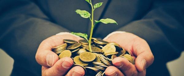 Accumulo della ricchezza - la fase 1 del FIRE